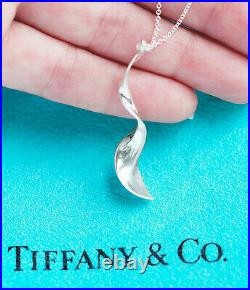 Tiffany & Co Sterling Argent Massif Chaîne Frank Gehry Orchidée Pendentif
